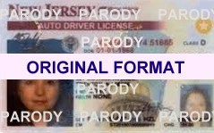 New Jersey Fake Ids Scannable Id With Holograms